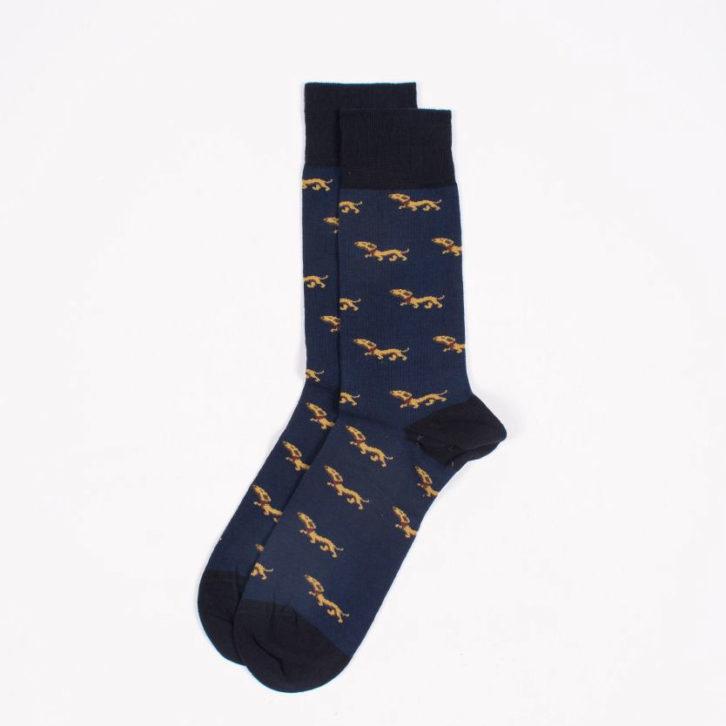 Ανδρική κάλτσα John Frank - JFLSCOOL03 - Μπλε