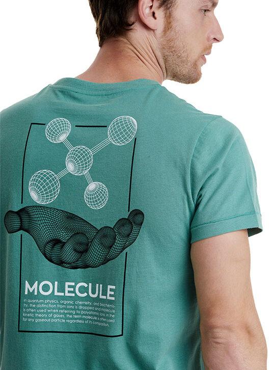 Ανδρικό T-Shirt με Τύπωμα Walk W5200-5-24 Βεραμάν