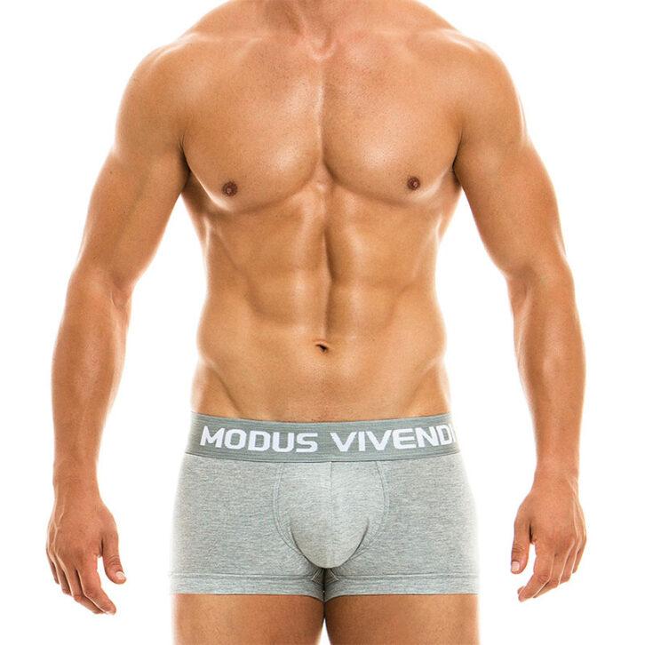 Ανδρικό Classic Boxer Modus Vivendi 02921_grey Γκρι